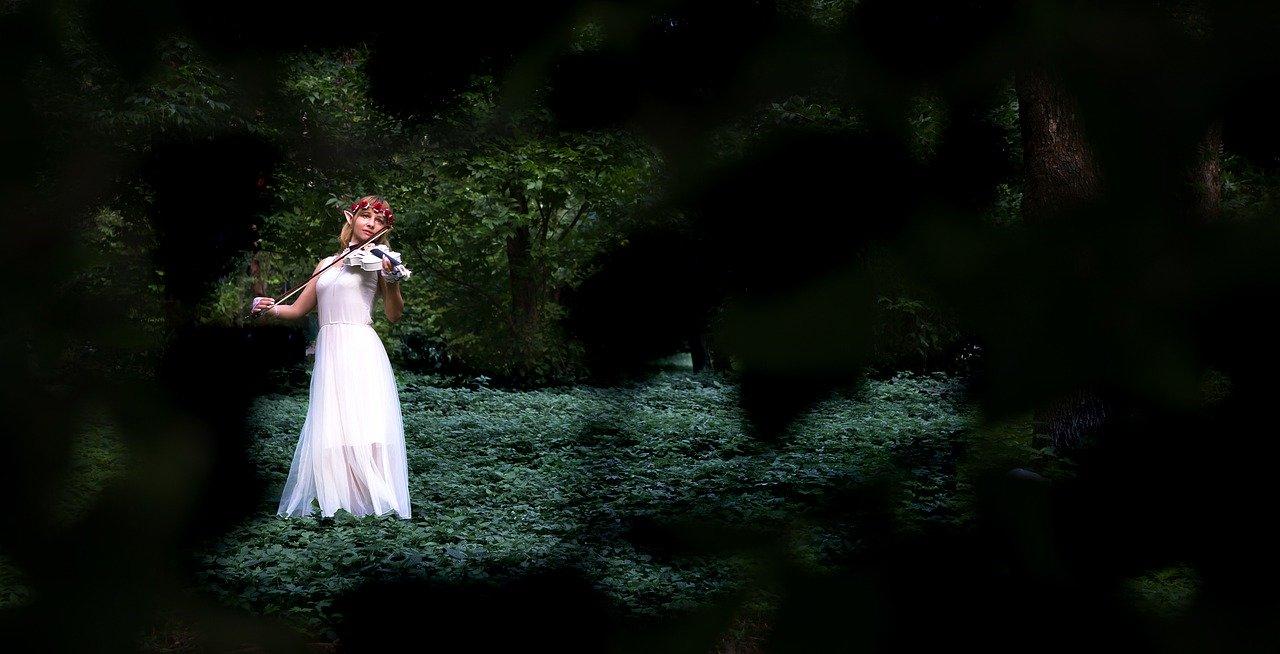 Immagine elfo con violino