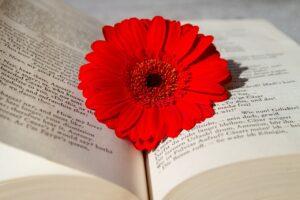 Libro di poesia